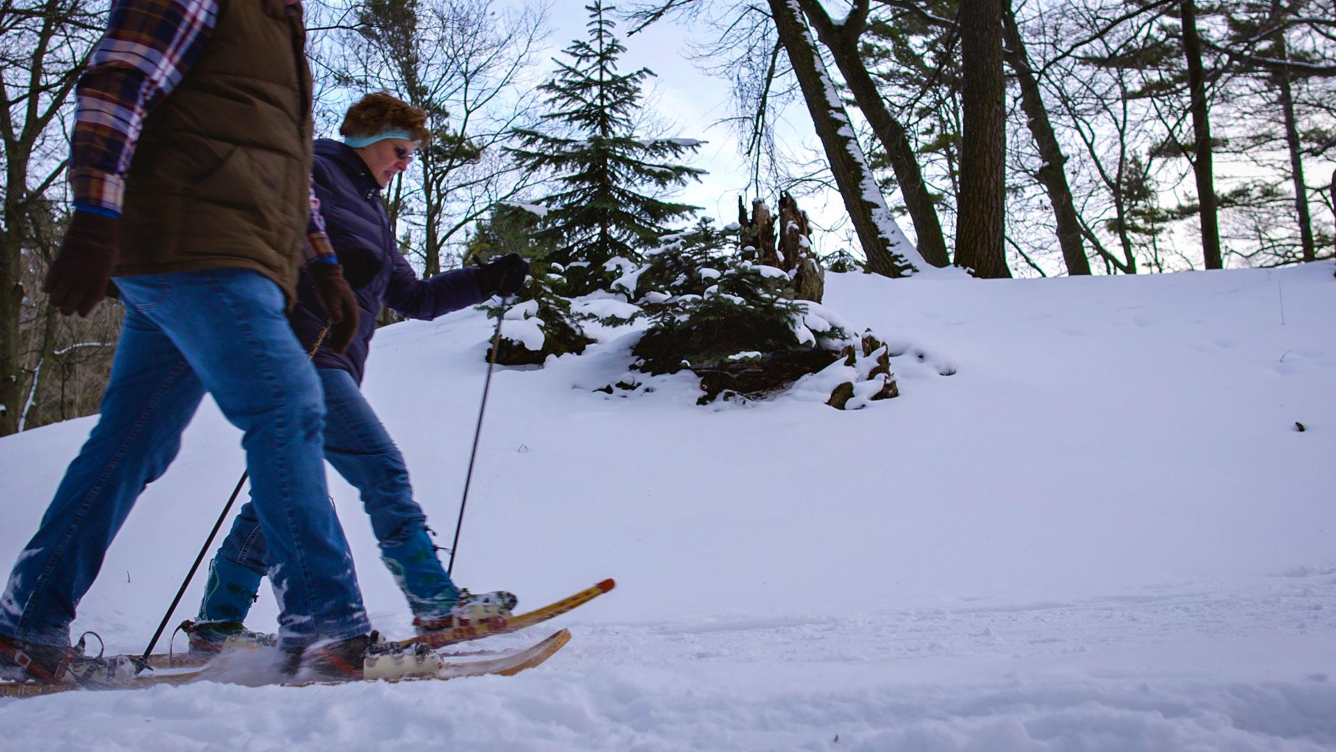 Snowshoe-7.jpg