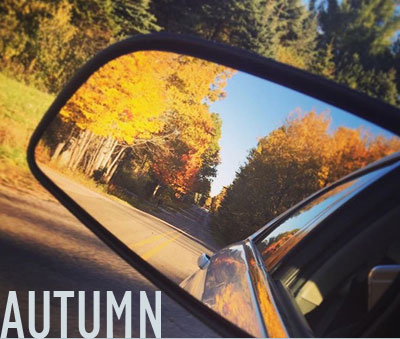 Pure Ludington Autumn